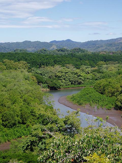 Explore the Rio Nosara in a Kayak