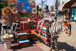 mexico news brief